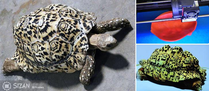 3d-printing-tortoise-shell2